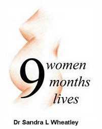 Nine Women, Nine Months, Nine Lives